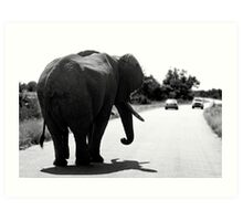 Playing Chicken With An Elephant Art Print
