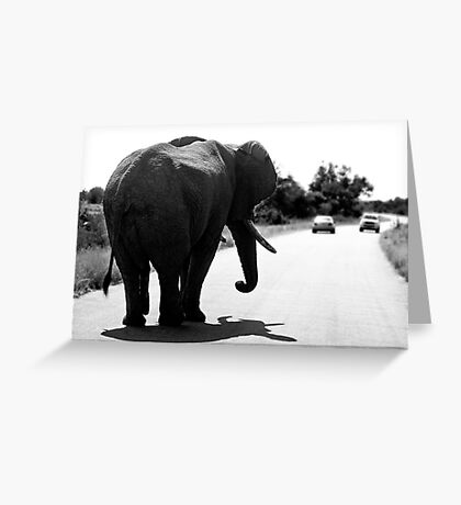 Playing Chicken With An Elephant Greeting Card