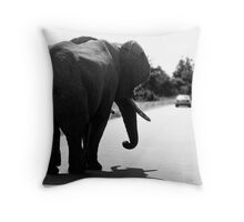 Playing Chicken With An Elephant Throw Pillow