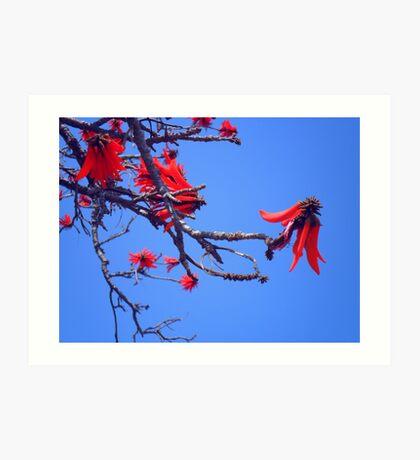 red rocket blue Art Print