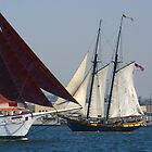 FESTIVAL OF SAIL 2010 by fsmitchellphoto
