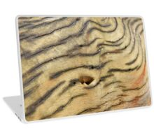 Wood Texture - Natural Background of Grain Laptop Skin