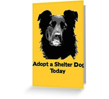 Adopt a Shelter Dog Today Greeting Card