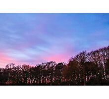 Sunset Over The Woods Photographic Print
