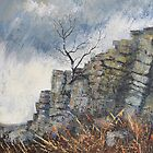Rain Approaching Stanage by Sue Nichol