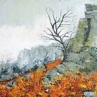 Autumn on Stanage by Sue Nichol