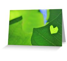 Natural Love - Heart of Life Greeting Card