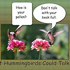 If Hummingbirds could talk... by Brian Dodd