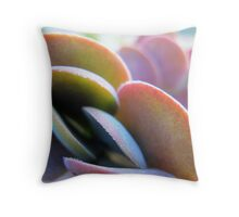 Coins or dollars or time Throw Pillow