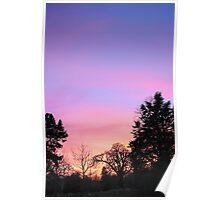 Sunset Over The Woods Poster