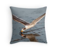 Skimmer Feeding Nice and Close Throw Pillow