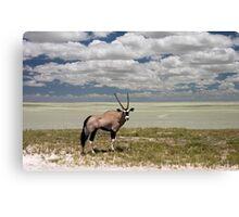 Oryx / Gemsbok,  and Etosha National Park ,Saltpan, Namibia, Africa. Canvas Print