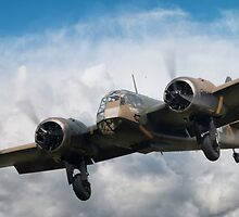 Blenheim Approach by J Biggadike