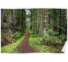 Umpqua River Trail Poster