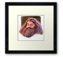 Hagrid : harry potter character Framed Print
