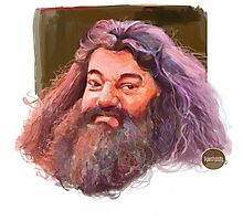 Hagrid : harry potter character Photographic Print