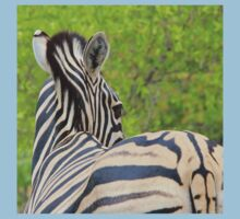 Zebra Colors - Patterns in Nature Kids Clothes