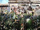 Ward Avenue Garden by John Douglas
