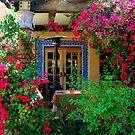 Arizona Garden by mavaladez