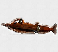 The Nautilus by Pierre Blanchard by esotericaart