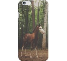 Flirt the Foal iPhone Case/Skin