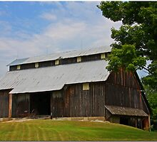 Indiana Barn by Chet  King