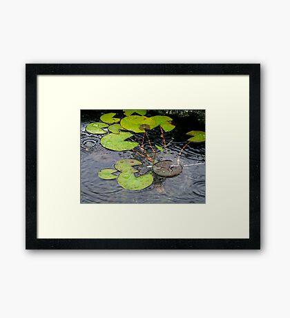 ripples of joy Framed Print