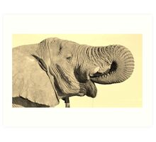 Elephant Bull - Joyful Water Art Print