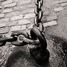 The Old Ball and Chain by Edward Myers