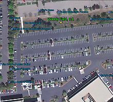 Weedy Field, CA (best viewed LARGE) by Lenny La Rue, IPA