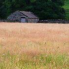 Barn by Grassmere, Lake District, Cumbria, UK by ArtsGirl2