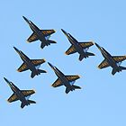 Blue Formation by jermesky