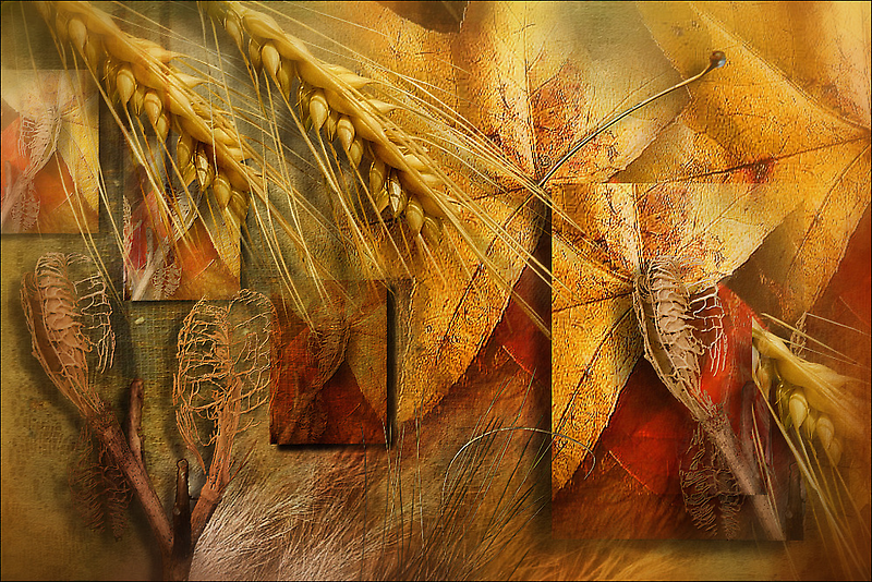Legends of the Fall by Carmen Holly