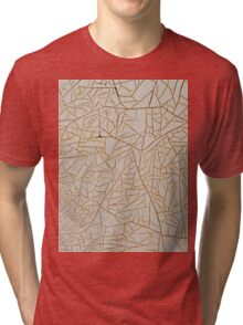 Paint of Ages - Rustic Pattern Backgrounds Tri-blend T-Shirt