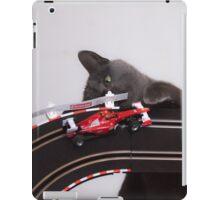 Playful Korat Kitty 002 iPad Case/Skin
