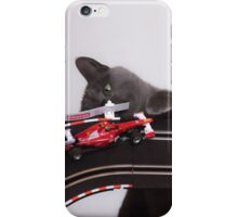 Playful Korat Kitty 002 iPhone Case/Skin