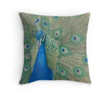 Casanova II Throw Pillow