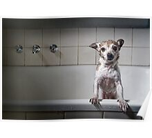 Bath Time's Over Poster