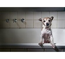 Bath Time's Over Photographic Print