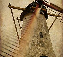 Brassers Molen, Biggekerke by George Parapadakis (monocotylidono)