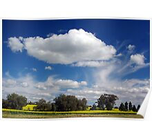 SPRING CANOLA FIELD.  Poster