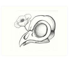 Tyto alba & Papaver Art Print