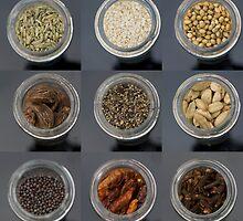 spice selection in jar by moken78