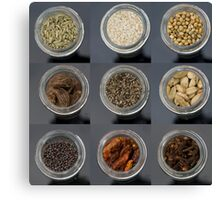 spice selection in jar Canvas Print
