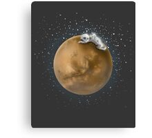 Lost in a Space / Marsporror Canvas Print