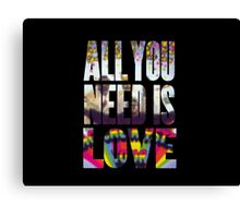 All you need Canvas Print