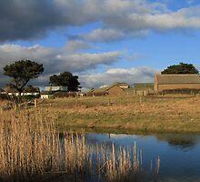 Redcross River Estuary by Chris Bolton