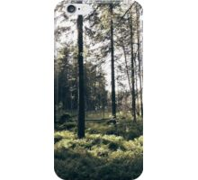 Peaceful Forest iPhone Case/Skin