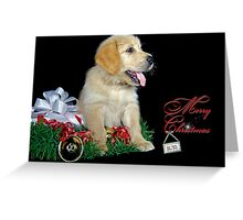 Holiday Happiness Greeting Card