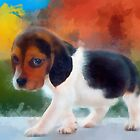 Beagle puppy by rok-e